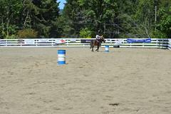 DSC_4074 (Primespot Photography) Tags: show horseshow horse horses game games horsegames flag