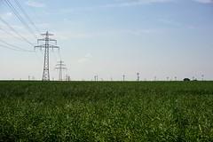 powerline (fuzefactory) Tags: power freileitung powerline feld grün raps windrad himmel sky