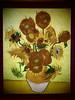 Zwölf Sonnenblumen (Pico 69) Tags: gemälde kunst vangogh niederlande holland pico69