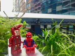 Iron Man and Spiderman on New York's Skyline (westhl) Tags: toy toys new york skyline lego legos iron man spiderman spider peter parker minifigure minifigures minifigs photography photo photos