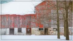 Worn Down (Note-ables by Lynn) Tags: snow winter barn oldbuildings farm brucecounty