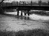 river don rising (Johnson Cameraface) Tags: 2018 april spring olympus omde1 em1 micro43 mzuiko 60mm macro f28 johnsoncameraface bridge newtonbridge blackandwhite monochrome riverdon floods flooding