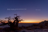 Kubu Island, Makgadikgadi Pan (Obliot) Tags: africa baobab salar 2010 limpido islands deserto panorama albero botswana blue lagosalato alba rocce kubu giallo cielo obliot makgadikgadi