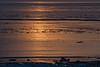 icy north-sea in winter (nr) (jotka*26) Tags: northsea sunset golden nature nordsee jotka26 berlin germany frozen waves ice landscape seascape whentheworldisafrozenmass eiszeit