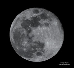 Easter Blue Moon (Our View Photography) Tags: bluemoon tamron150600mm aikensc bw