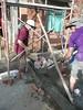P1070486 (Tricia's Travels) Tags: volunteering volunteer habitatforhumanity vietnam habitatforhumanityvietnam globalvillage travel asia