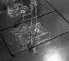 浸潤 (soaking) (Dinasty_Oomae) Tags: aires35 aires35iiia aires アイレス アイレス35 アイレス35iiia 白黒写真 白黒 monochrome blackandwhite blackwhite bw outdoor 神奈川県 神奈川 横浜市 横浜 kanagawa yokohama 噴水 fountain 横浜美術館 yokohamamuseumofart