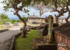 Barbados - 2017-18 (@Digbeyphoto) Tags: barbados caribbean bridgetown saintmichael bb