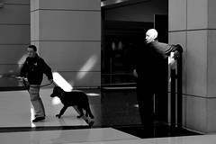 man / dog (Bo Dudas) Tags: human man dog shadows monochrome bw blackwhite composition america