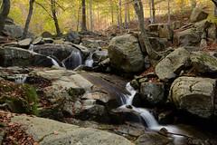 Riera de Passavets (Hachimaki123) Tags: montseny parcnaturaldelmontseny paisaje landscape río rio river riera riu rieradepassavets cascada waterfall