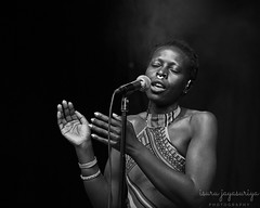 Jaqee (@isurujfoto) Tags: jaqee music live gig d850 black white bw performance perform artist singer sing clap mic concert soul jazz reggae sweden 70200fl 70200 göteborg gothenburg liseberg summer