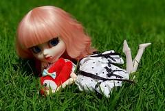 Hello summer (MlleChantilly) Tags: pullip groove dollphotography dollsphotography summer grass pinkhair mymelody lolita plush blueeyes contest