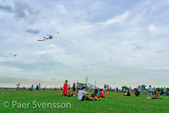 Singapore - May 25, 2018: People, familys and children playing with kites at Marina Barrage in Singapore on a Sunday afternoon (per.svensson@mac.com) Tags: grass summer fun tourism group sky holiday lateafternoon people marinabarrage travel tourist vacation recreation adult playing singapore kite man 2018 child families marina relaxing leisure roof outdoors kids action enjoyment may barrage