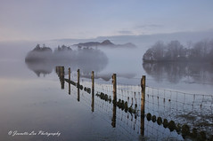 Dawn's Eerie Silence (jeanette_lea) Tags: sunrise dawn lowlight landscape crow park derwentwater the lake district cumbria united kingdom mist trees fells fence reflections sky cloud