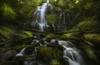 Proxy Falls (Three Sisters Wilderness, OR).