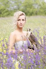 (Cristina Laugero) Tags: bionda blonde flowers fiori grass prato girl portrait ritratto rapace falco birdofprey