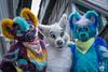 DSC_0079 (BerionHusky) Tags: fursuit mascot costume monschau furry fur