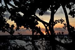 Time for Reflection (The Spirit of the World ( On and Off)) Tags: iboisland island sun sunset light mozambique quirimbaarchipeligo africa indianocean lagoon clouds sky mangrovelagoon seascape landscape evening