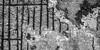 Kokerei Hansa 6590 (s.alt) Tags: kokereihansa hansa dortmund germany industriekultur stillgelegt museum technicalbuildingmonument industrie fabrik industrial strukture decay steel stahl cokingplanthansa cokingplant kokerei coke cokeovenminecraft cokeovenplant cokeoven industriedenkmalpflege industriedenkmal huckarde bergbau mining koks routeindustriekultur closed closeddown silhouette blackwhite bw schwarzweiss sw umriss monochrome monochrom
