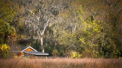 Tucked Away (Simmie | Reagor - Simmulated.com) Tags: southcarolina charleston fishingshack spring wetland 2018 march