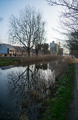 Canal -  Dublin, Ireland (ChrisGoldNY) Tags: chrisgoldphoto chrisgoldny chrisgoldberg albumcover bookcover licensing forsale sony sonyimages sonyalpha sonya7rii ireland irish dublin water reflections canal