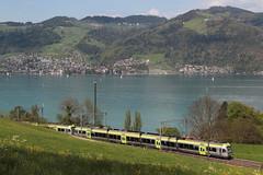 BLS Lötschbergbahn Lötschberger RABe 535 mit Zug 4177 B.ern - S.piez unterwegs bei Einigen im Berner Oberland im Kanton Bern der Schweiz (chrchr_75) Tags: christoph hurni chriguhurni chriguhurnibluemailch chrchr april 2018 chrchr75 schweiz suisse switzerland svizzera suissa swiss albumbahnenderschweiz albumbahnenderschweiz20180106schweizer bahnen bahn eisenbahn train treno zug hurni180422 albumblslötschberger albumblslötschbergbahn schweizer bls lötschbergbahn lötschberger rabe 535 niederflur nahverkehrszug regionalverkehr chrigu juna zoug trainen tog tren поезд lokomotive паровоз locomotora lok lokomotiv locomotief locomotiva locomotive railway rautatie chemin de fer ferrovia 鉄道 spoorweg железнодорожный centralstation ferroviaria
