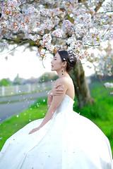Love (Seahorse168) Tags: photo weddingphotography people kyoto japan sakura portrait 56mmf12 56f12apd fuji fujifilm bridal bride wedding love