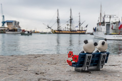 """""""Escale à Sète"""", for the lovers of the sea (Ballou34) Tags: 2018 7dmark2 7dmarkii 7d2 7dii afol ballou34 canon canon7dmarkii canon7dii eos eos7dmarkii eos7d2 eos7dii flickr lego legographer legography minifigures photography stuckinplastic toy toyphotography toys stuck in plastic sète occitanie france fr panda love bench hermione boat water sea flower"""