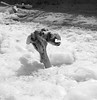 Ice Creature_II_7419 (Robt-Geo) Tags: driftwood ice