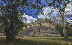 Ek Balam 4618 ch (Emilio Segura López) Tags: ekbalam pirámide maya arqueología arquitecturamaya culturamaya árbol yucatán méxico