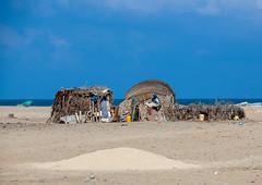 A somali hut called aqal o the seaside, Awdal region, Lughaya, Somaliland (Eric Lafforgue) Tags: africa aqalsoomaali arid awdal copyspace day desert developingcountry eastafrica ethnic exterior habitation heat horizontal hornofafrica house housing hut lughaya nature nopeople nomad nomadic nomadicpeople nomadism outdoors poverty redsea seaside soma6557 somali somalia somaliland tradition traditional tribal tribe awdalregion
