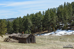 A Fixer Upper (kevin-palmer) Tags: april spring sunny sunshine blue sky clouds montana nikond750 tamron2470mmf28 old abandoned building structure house cabin log afternoon pinetrees rolling hills