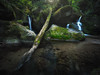The Place Beyond The Pines (v-_-v) Tags: water waterfall river stream black forest schwarzwald gertelbach trees green leaves woods trunk rocks wet mood pond explored