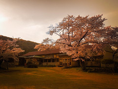 Ogawa Elementary School Shimo Branch School [Explore] (chikuma_riv) Tags: japan nature landscape river lake mountain forest flower sunset sunrise spring summer autumn winter leaves