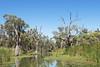 Loch Luna Game Reserve - Australia (wietsej) Tags: loch luna game reserve australia rx10 iv rx10m4 nature landscape river