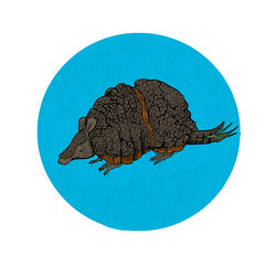 Armadillo (HalletGonzalez) Tags: ink digital painting armadillo animal mexico hallet