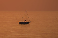 Liquid Gold (DP the snapper) Tags: boat gold gulls sunset aberystwythsouthbeach birds