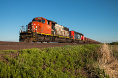 Free Range Zebra (Jake Branson) Tags: train railroad locomotive cn canadian national sd402w emd zebra stripe 5268 limestone jenny jennies iron range mn minnesota sax