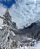 Yosemite vertical pan (Chief Bwana) Tags: ca california yosemite yosemitevalley yosemitenationalpark nationalparks snow winter tunnelview psa104 chiefbwana