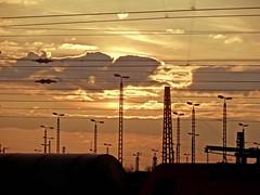 Lampen (onnola) Tags: hamm lampe nordrheinwestfalen deutschland germany northrhinewestphalia sonne himmel wolken sky clouds sun gegenlicht backlightning sonnenuntergang sunset silhouette mast oberleitung