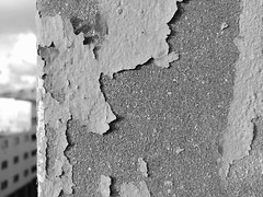 Zero is Signaling 0⃣ Textured  Pattern Old Wall Window Window View Entropy Decomposing Decay Decaying Beauty Of Decay Urban Exploration Architecture Deterioration Rundown Damaged Rough Decline Streetphotography Architecture Blackandwhite Monochrome Shades (Achwaq Khalid) Tags: signaling textured pattern old wall window windowview entropy decomposing decay decaying beautyofdecay urbanexploration architecture deterioration rundown damaged rough decline streetphotography blackandwhite monochrome blackvswhite