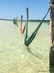 IMG_0187 (sasashinohara) Tags: jeri ceará jijoca lagoa do paraíso jericoacoara brasil brazil