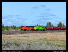BNSF Grain Train at Fishtrap, WA (funnelfan) Tags: train railroad railway shortline locomotive pnw pacificnorthwest bnsf washington heritage unit illinoisterminal sd70ace fishtrap
