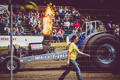 tractor pull [Day 3391]
