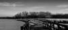 "la Passerelle du Marais ( P-A) Tags: bandelieu douceur entresaison faune marais nbsetein oasis passerelle refuge reposant mclaurin repos silence parc nb photos simpa© ithinkthisisart photoquébec ""atravésdetumirada"""