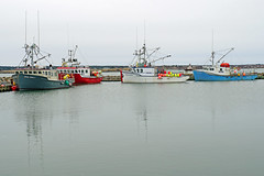 NS-00095 - Part of the Fleet (archer10 (Dennis) 141M Views) Tags: sony a6300 ilce6300 village 18200mm 1650mm mirrorless free freepicture archer10 dennis jarvis dennisgjarvis dennisjarvis iamcanadian novascotia canada boats lobster boat harbour buoys red white blue green