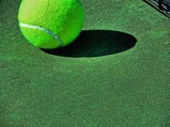 Game Over (clarkcg photography) Tags: green tennisball court net gorgeousgreen light shadow