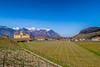 Aigle, son vignoble et son château (axel274) Tags: aigle bex canonpowershotg5x chablais ollon schweiz suisse switerland vaud vignoble vignes vineyard alpes château castle