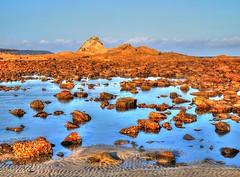Reflections between I (elphweb) Tags: nsw australia hdr highdynamicrange sand sandy shore shoreline rocks rock rocky rockformation reflections reflection seaside