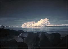 2018 04 19 Oestrich Insel III (Mister-Mastro) Tags: island insel rhein rhine oestrich rheingau ir infrared 720nm ndfilter